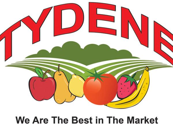 Tydene Logo Design
